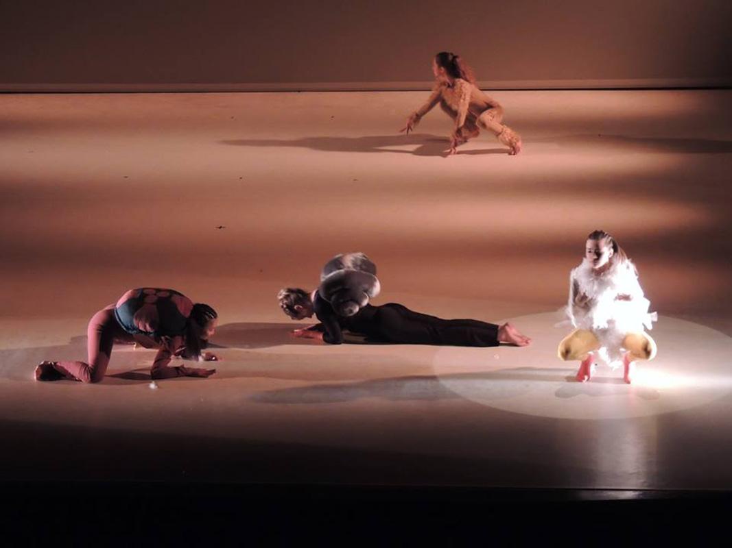 spectacle-danse-ca-marche-4