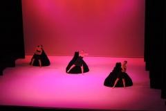 spectacle-danse-ca-marche-8