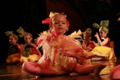 spectacle-danse-jazz-safari-19